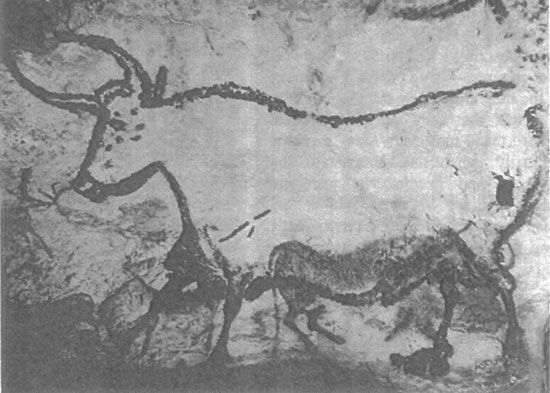 Auroch - peinture rupestre