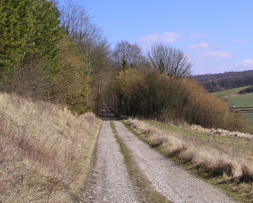 Chemin entretenu