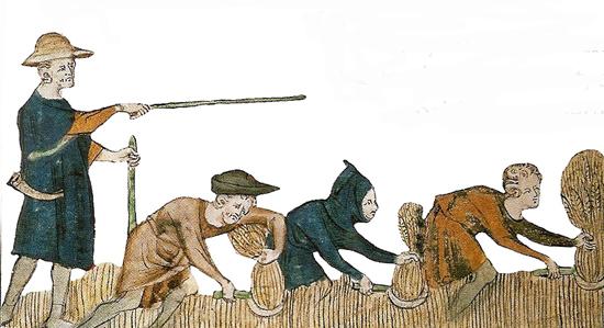 Paysans du Moyen Age au travail