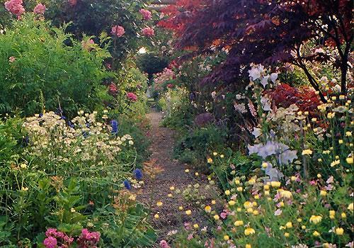 Jardin à l\'anglaise