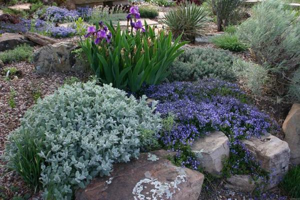 jardin de rocaille - pente naturelle