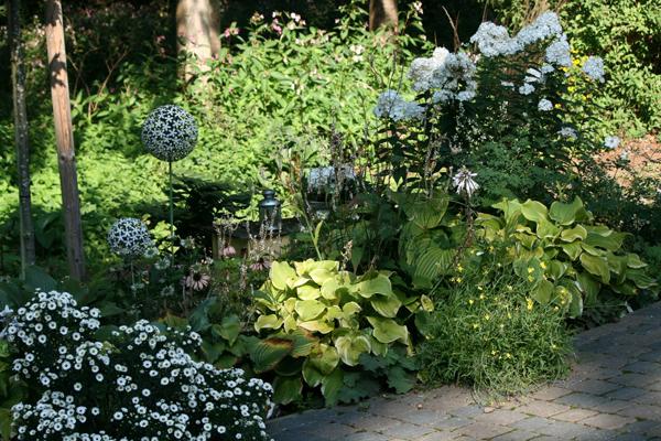 jardin l 39 ombre