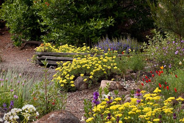 jardin de graviers