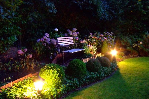 Jardin des soirs d'été, près des hortensias