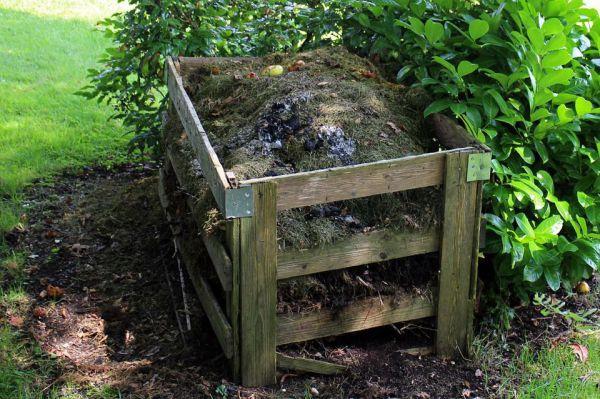 Compost biologique