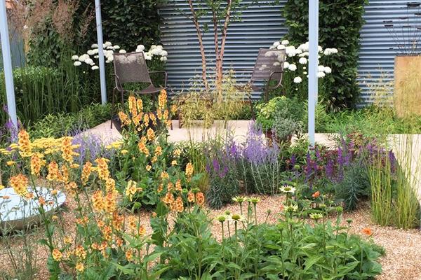 Aménagement jardin de graviers dans une cour intérieure
