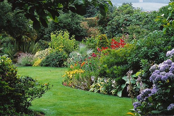 Jardin à L Anglaise