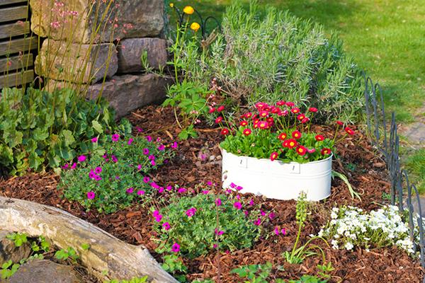 Conserver l'humidité du sol