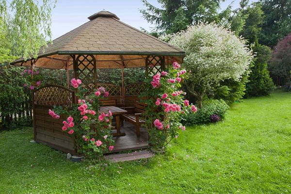 Jardin des soirs d'été, lumière et parfum des roses